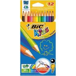 Bic - Bic Kids Evolution Kuru Boya Takımı 12 Renk