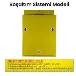 Kar - Boşaltım Sistemi Modeli
