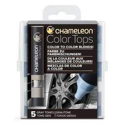 Chameleon - Chameleon Color Tops Marker Kalem 5li Set Gray Tones