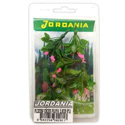 Jordania - Jordania Çiçek Maketi Fuşya 3.5cm 6lı FL3235F