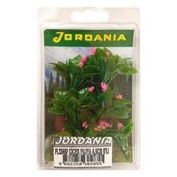 Jordania - Jordania Çiçek Maketi Fuşya 4.5cm 6lı FL3245F