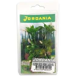 Jordania - Jordania Çiçek Maketi Pembe 3.5cm 6lı FL3235P