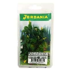 Jordania - Jordania Çiçek Maketi Sarı 3.5cm 6lı FL3235S
